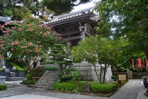 Temple Hasedara - 2