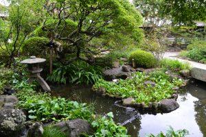 Temple Hasedara - jardin