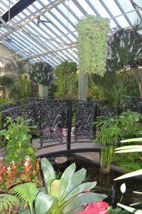 fitzroy-garden