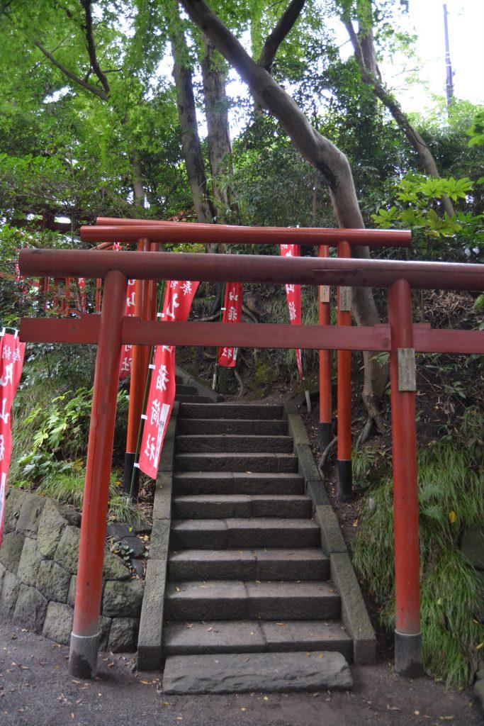TSURUGAOKA HACHIMANGU SHRINE - Torii
