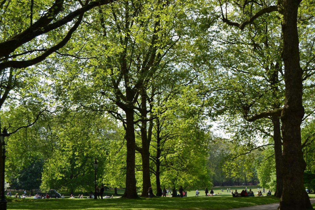 St James Parc