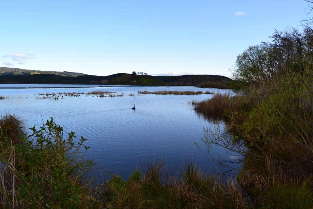Blue & Green Lake