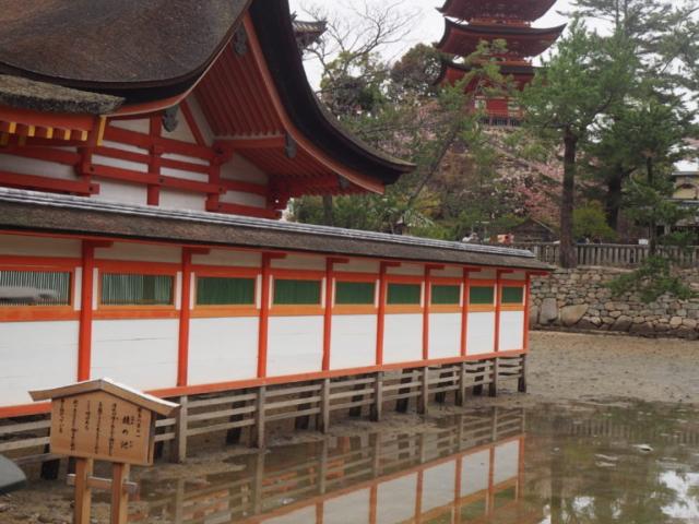 vue sur la pagode