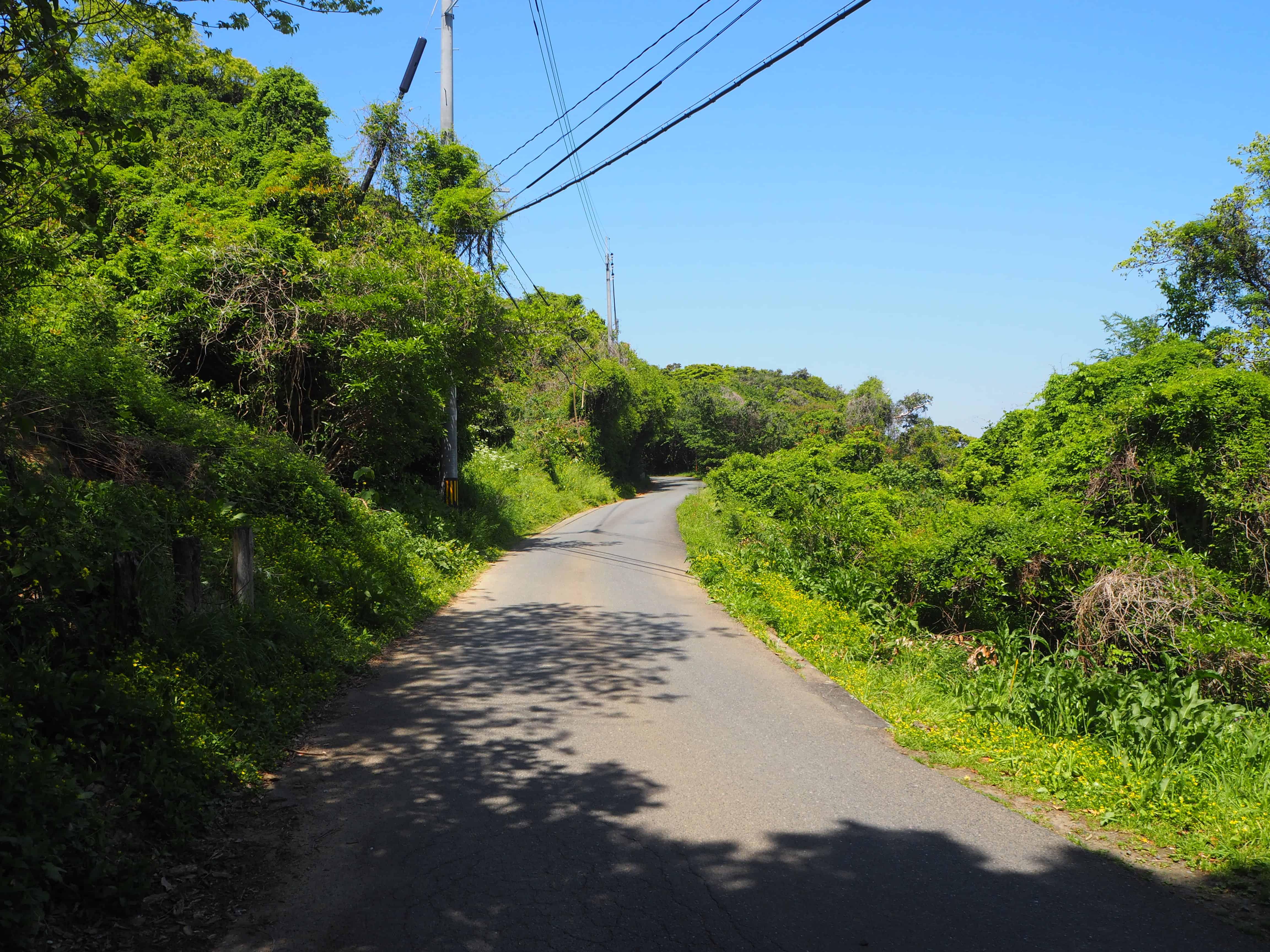 petite route typique de l'île