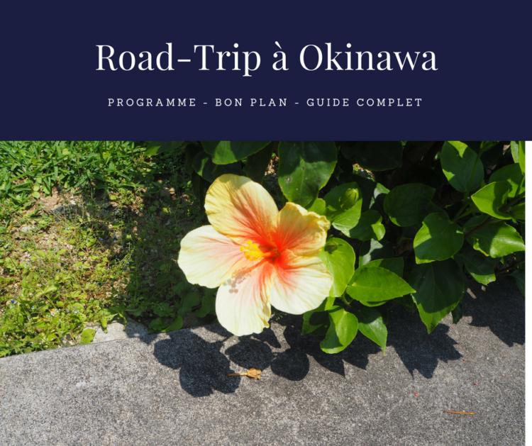sites de rencontres gratuits à Okinawa rencontres en ligne en Grand Theft Auto 4