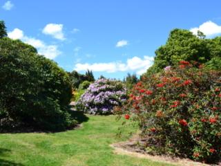 jardins de fleur