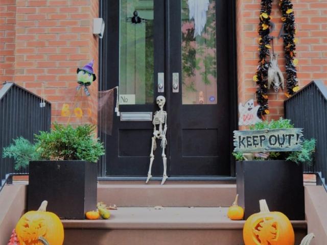 citrouilles et squelette