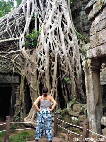 moi devant l'arbre - a la Lara Croft