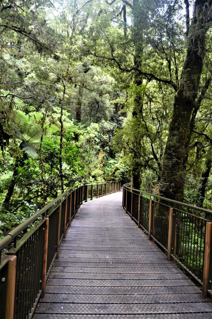 Fjord de NZ